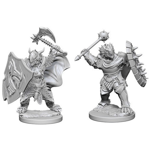 Dungeons_and_Dragons_Miniatures_W4_Dragonborn_Male_Paladin-2.jpg