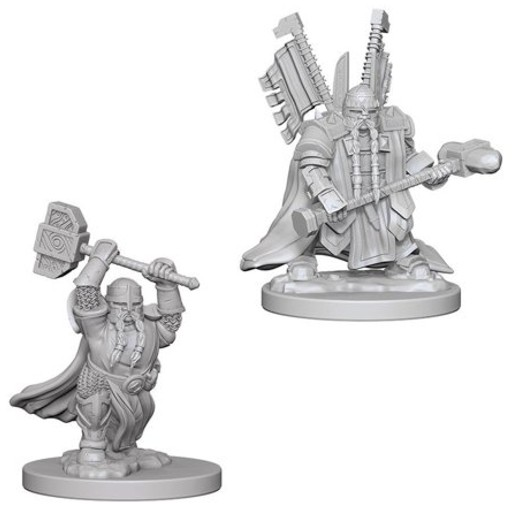Dungeons_and_Dragons_Miniatures_W4_Dwarf_Male_Paladin-2.jpg