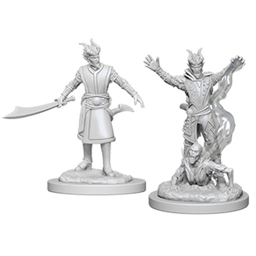 Dungeons_and_Dragons_Miniatures_W6_Male_Tiefling_Warlock-2.jpg