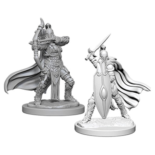 Pathfinder_Deep_Cuts_Unpainted_Miniatures_W6_Female_Knights_Gray_Maidens-2.jpg